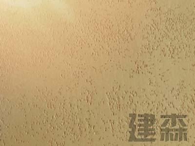 上海粗洞石